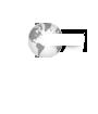 Global Village Advisors LLC